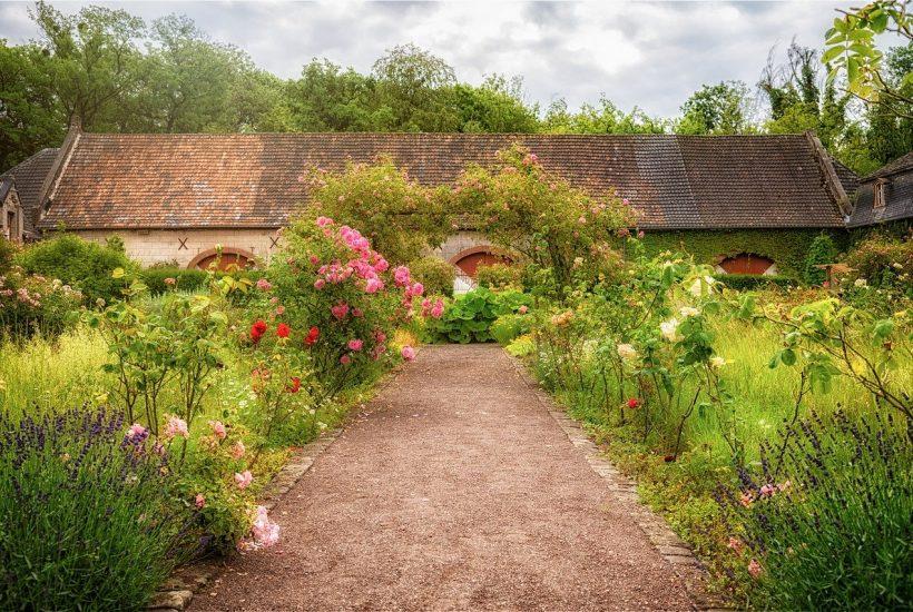Tout est bon dans le jardin – Une métaphore pour notre désir ultime